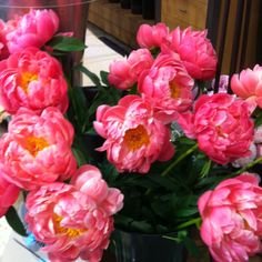 Chilean peonies at Central Market today, heavenly!