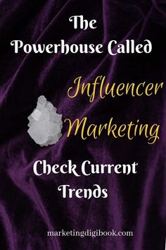 Top Influencer Marketing Trends That Will Blow Off the Marketing Landscape — Marketing Digi Book - Content Marketing Tips and Visual Content - Styled Stock Photos