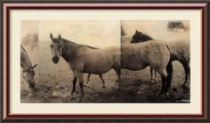 Amazon.com - Extension of a Horse Framed Print by Casey McKee Framed