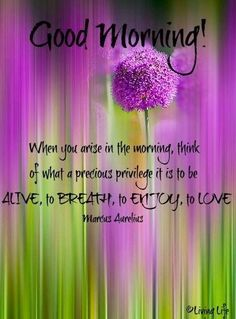 Good morning quote via Living Life at www.Facebook.com/KimmberlyFox.39: