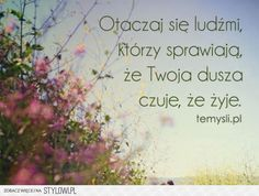 stylowi.pl/8104322