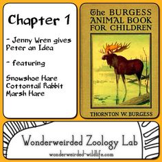 The Burgess Animal Book Chapter 1,Free Printable Science Worksheets & Animals to Color  Charlotte Mason Homeschooling Curriuculum Teacher Resources, Zoology , Learning Animals Living Books Curriculum