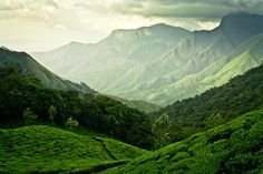 Tea plantations near Munnar. Munnar is a hill station on the Western Ghats, a range of mountains situated in the Idukki district of the Indian state of Kerala.