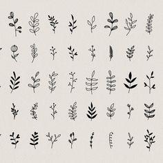 Small Bff Tattoos, Cute Tiny Tattoos, Mini Tattoos, Leaf Tattoos, Small Nature Tattoo, Nature Tattoos, Mini Drawings, Small Drawings, Floral Tattoo Design