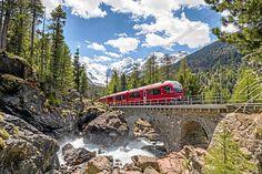 Morteratsch Bernina Express