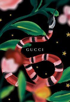 Gucci •