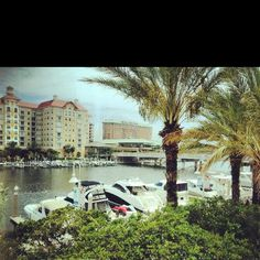 Gorgeous view from the Tampa Marriott Waterside Hotel!