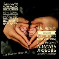 Holding Hands, Bible Verses, Reading, Business, Hand In Hand, Scripture Verses, Word Reading, The Reader, Bible Scriptures