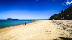 A beach at Abel Tasman National Park, perhaps the most resplendent place in the country.