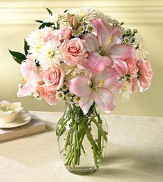 áster bouquet - Pesquisa Google
