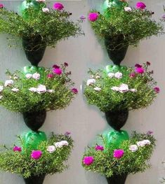Bottle garden - 36 Great DIY Ideas for Original Garden Pots – Bottle garden Garden Crafts, Diy Garden Decor, Garden Projects, Wood Projects, Diy Crafts, Herb Garden, Garden Pots, Jardim Vertical Diy, Different Kinds Of Flowers