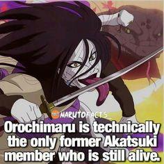 Haha… Orochimaru is never gonna die ♥♥♥ Sarada Uchiha, Naruto Uzumaki, Anime Naruto, Boruto, Naruto Facts, Cartoons Love, Naruto Series, Naruto Pictures, Manga Comics