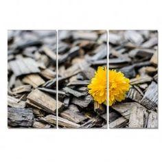 Amarillo tríptico