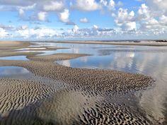 Boschplaat #Terschelling #Waddenzee #Werelderfgoed (credits foto: Jan Huneman)