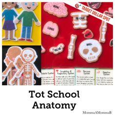 Target Dollar Spot | Anatomy Tot School Unit | Preschool Activities with Felt Tot School, School Days, Target Dollar Spot, Tracing Letters, Unit Plan, Community Helpers, School Themes, School Lessons, Preschool Activities