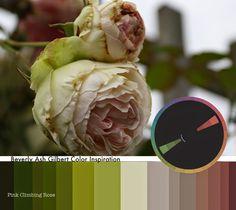 Beverly Ash Gilbert: Color Inspiration - Pink Climbing Rose