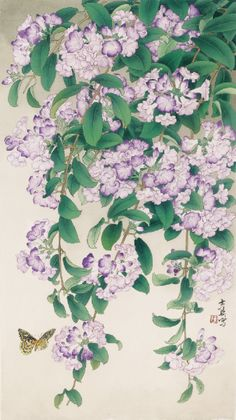 Chinese Painting, Chinese Art, Creepers, Asian Art, Art Pictures, Watercolor Art, Peacock, Florals, Oriental