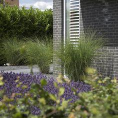 Strakke tuin vrijstaande woning