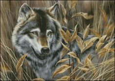 Sunlight (Timber Wolf ) Counted Cross Stitch Pattern | Shinysun's Cross Stitching