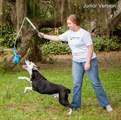 Flirt Pole, Dog Chase Exercise Toy from Squishy Face Studio
