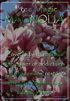 MAGNOLIA Love, loyalty; reduces the power of addictions and obsessions, restores strength after a long illness. Symbolises fidelity in love.