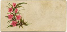 Shabby Victorian Calling Card Regina Hofer (name removed) ~ Free #Printable Vintage Graphics