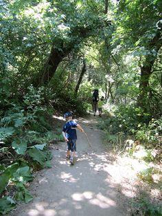 Birdsong Trail in Ogden