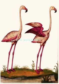 Printable art pink flamingo bird vintage door Lebonprintables, $2.49
