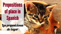 "This video covers how to use Spanish prepositions of place to say where objects are in Spanish – dónde están ubicados los objetos. They are called ""preposiciones de lugar"" in Spanish. You will see several slides showing things and animals, and their location using Spanish prepositions of place. Las preposiciones de lugar."