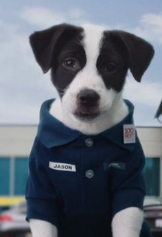 What makes any Super Bowl ad better? Puppies.