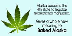 Baked Alaska Baked Alaska, Meant To Be, Plant Leaves, Thoughts, Quotes, Plants, Quotations, Flora, Plant