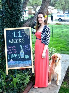cute idea for the weeks while pregnant