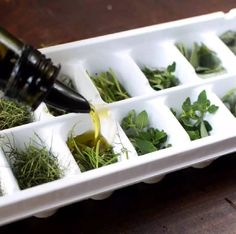 Amazing idea for preserving herbs that are about to go bad or save your favorite. Amazing idea for preserving herbs that are about to go bad or save your favorites from your garden to use all season! All you need is an ice cube tray. Freezing Fresh Herbs, Preserve Fresh Herbs, Freeze Herbs, Cuisine Diverse, Food Trends, Canning Recipes, Dose, Ice Cube Trays, Clean Eating Tips