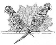 Steve Turner Doodles by Squidoodle