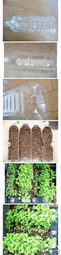 Recycle plastic bottles for mini garden & seed starting You can also do this with plastic food trays from cookies, doughnuts, rotisserie chicken. Any plastic container will work. Just add a few pebbles, aquarium rock or other drainage material in the bottom so roots don't rot if you accidentally add too much water.