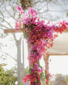 The huppa was wired with bougainvillea in a range of pinks and corals.