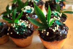 check out some nice cannabis recipes Weed Recipes, Marijuana Recipes, Cannabis Edibles, Medical Benefits Of Cannabis, Medical Marijuana, Marijuana Facts, Cupcake Cakes, Cupcakes, Oregon Living