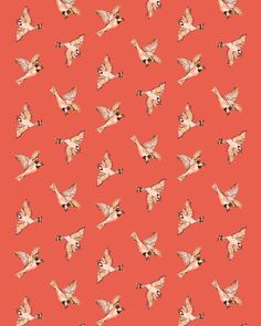 We heart this country bird print #modernheritage