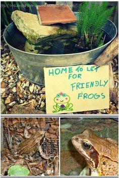 Honest Yoga Frog Garden Ornament Decor Solar Outdoor Warm And Windproof Statues & Lawn Ornaments