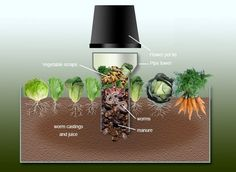 How to Build a Worm Tower - This visually illustrates the concept of building a worm farm in your raised garden bed, where you want your compost worms to go to work for you, feeding your vegetables with nutrients. This system allows you to recycle food sc Organic Gardening, Gardening Tips, Urban Gardening, Urban Farming, Indoor Gardening, Organic Fertilizer, Container Gardening, Tower Garden, Key Hole Garden