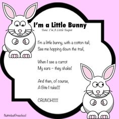 Im a Bunny Easter Song for Preschool Children April Preschool, Preschool Music, Preschool Activities, Pool Activities, Songs For Toddlers, Easter Songs For Preschoolers, Easter Songs For Kids, Spring Songs For Preschool, Easter Songs For Children