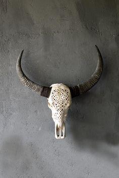 carved skull bone-genius.