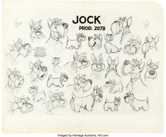 Lady and the Tramp Studio Model Sheet Group (Walt Disney, Group of seven Walt Disney Studio animator's - Available at 2015 April 9 - 10 Animation Art. Animal Sketches, Animal Drawings, Art Drawings, Disney Sketches, Disney Drawings, Character Design Animation, Character Drawing, Jock, Disney Sleeve
