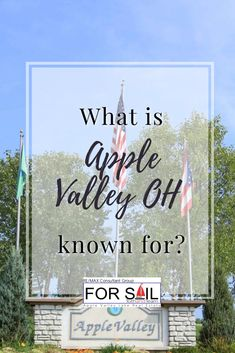 Perhaps you've heard about this place in Ohio called Apple Valley. You might be wondering what it's known for and why you should pack your bags and spend your next vacation here. What Is Apple, Apple Valley, Pack Your Bags, Ohio, Vacation, Columbus Ohio, Vacations, Holidays Music, Holidays