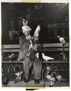 Man feeding pigeons in Washington Square Park, New York, ca. 1944