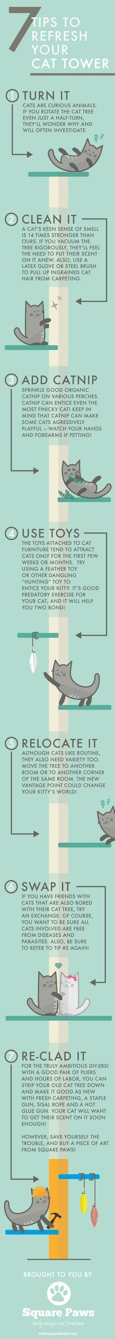 ♥ Cat Care Tips ♥ 7 Tips to Refresh Your Cat Tower — Square Paws-- This is a wonderful infographic about Ways To Make Your Cats tower interesting again for him. To be honest, I've never seen or thought of these ideas. Take a look, and see what you think.