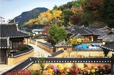 경북 영덕군 영덕 괴시리 전통마을