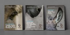 Print collateral for international charity The Donkey Sanctuary. Devon, Ad Design, Print Design, Promotional Design, The Donkey, Tears Of Joy, Brand Identity Design, Brand It, Visual Identity