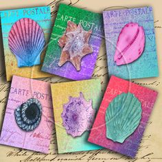 Instant Download Colorful Seashells ATCs by DigitalPerfection