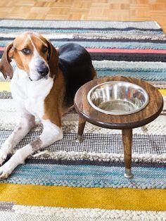 MuyVariado.com: DIY, Comedor para Perros                                                                                                                                                                                 Más